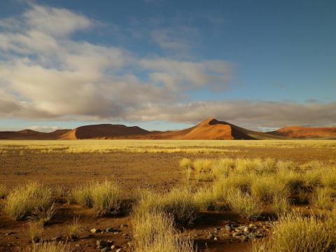 Sossusvlei scenery