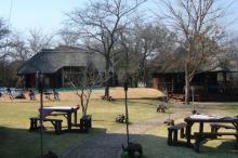 Lion Park Accomodation